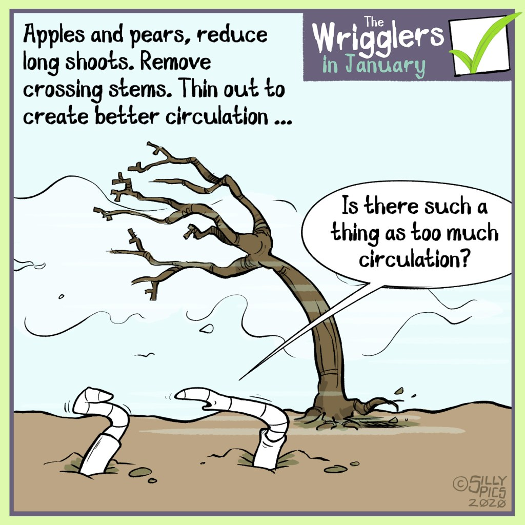 Cartoon for pruning, it creates good circulation in the plant's framework