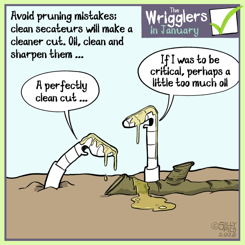 cartoon about keeping you pruning cutters clean, sharp and oiled
