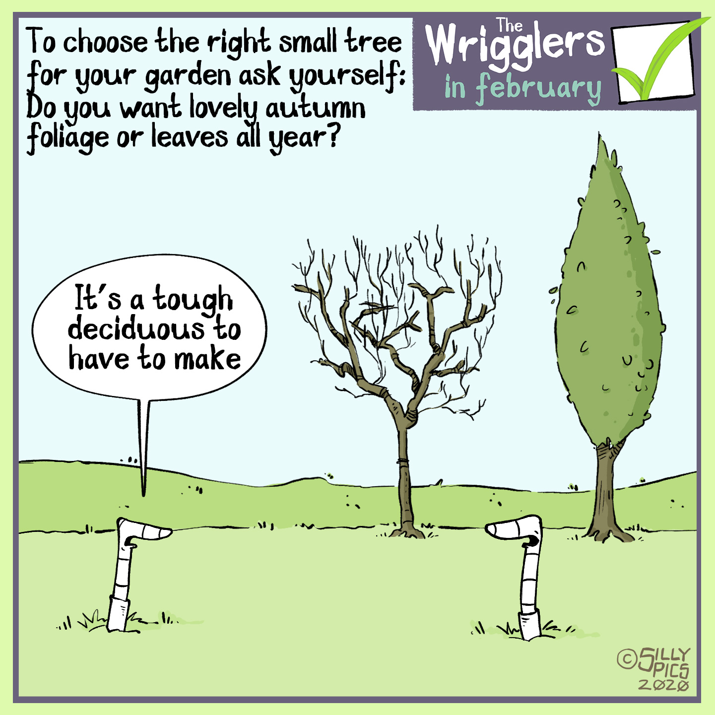 when choosing a tree cartoon, deciduous or evergreen?