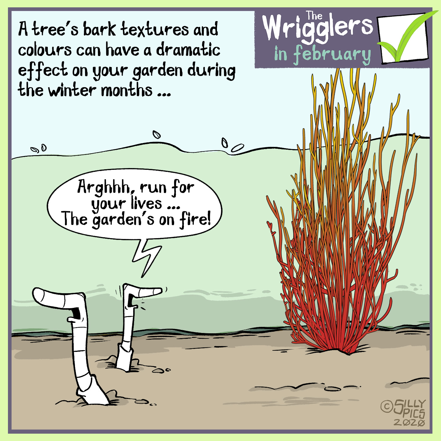 a cartoon about planting small trees in the garden and how bark colour can be an influence to setting the mood in the garden too