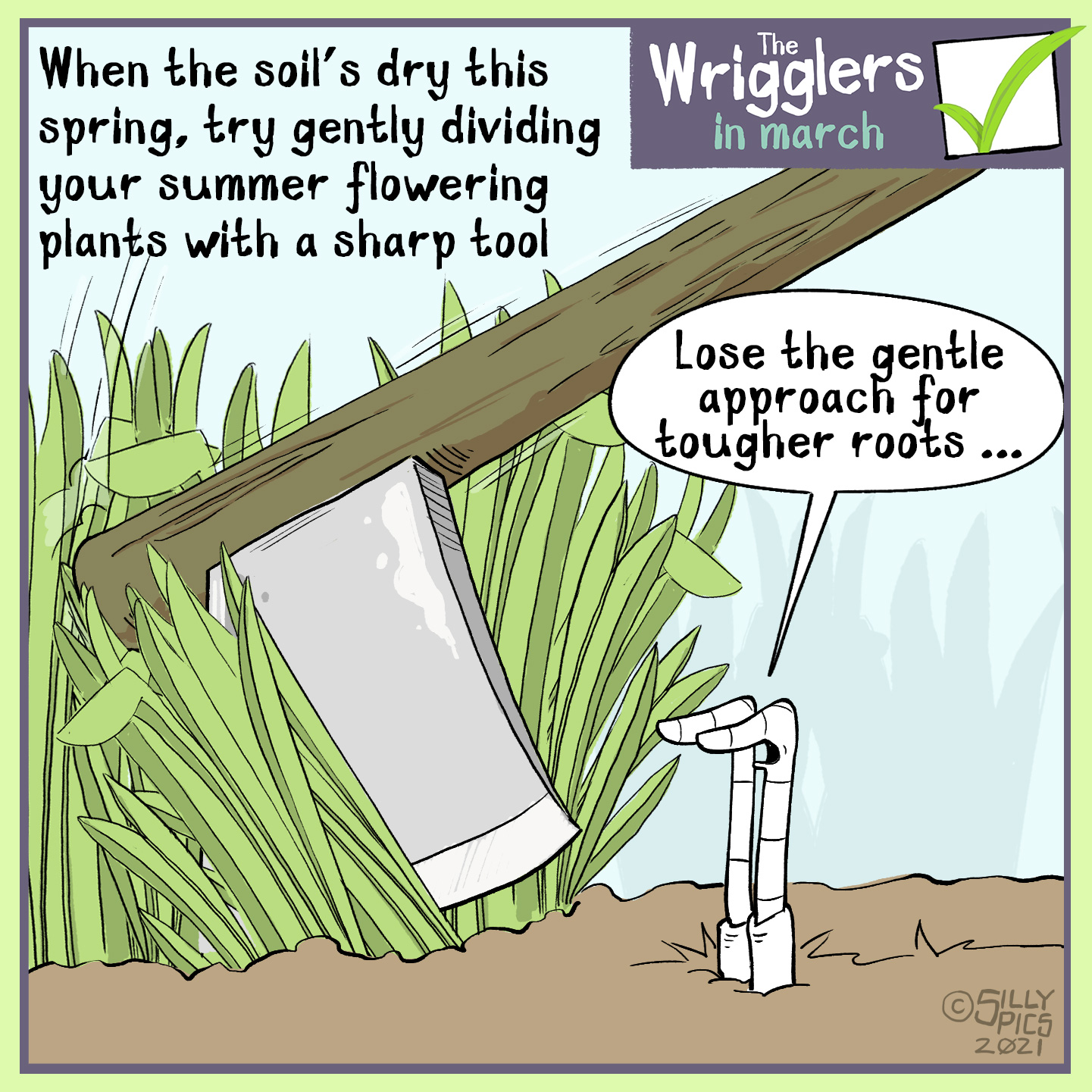 Gardening cartoon from the wrigglers. Dividing perennials is a job to be done while the plants are dormant, and before they wake up for Spring. The advice is to try gently dividing to start with , and when all else fails use an axe. One worm says to the other, lose th gntle approach for tougher roots