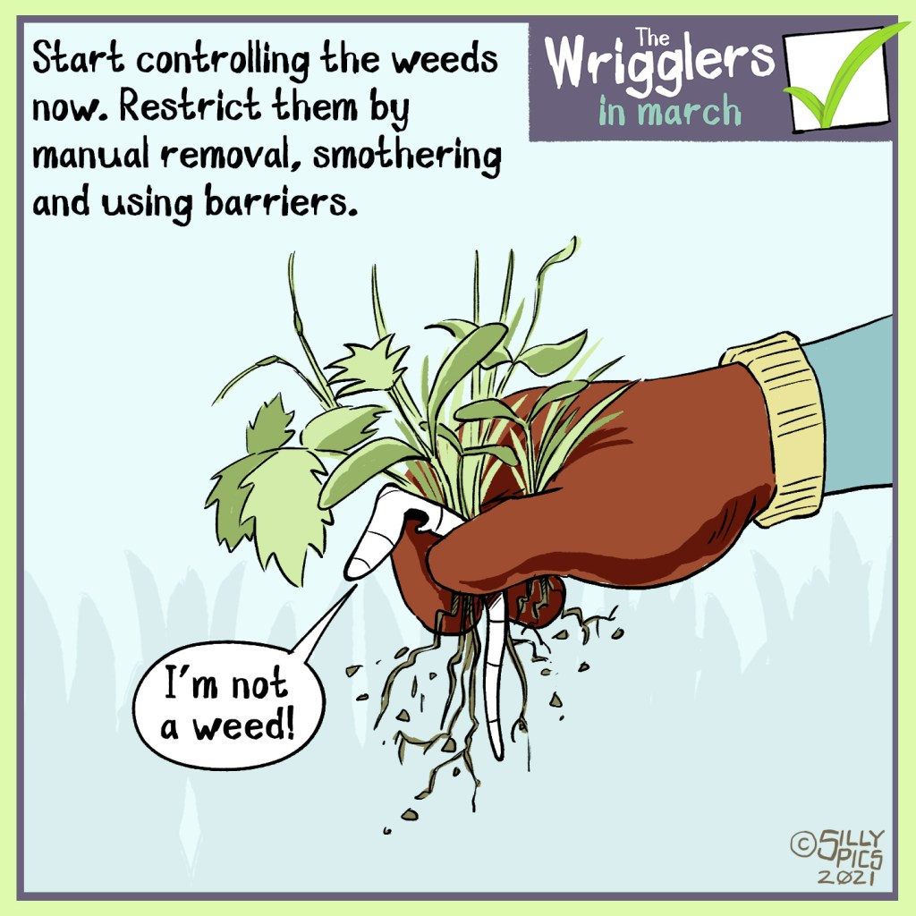 March is the time to start controlling your weeds. This cartoon tells you that you can contro them by picking weeds or supressing them with sheets. The image is aof a worm being picked up wiuth a weed by a rubber gloved hand. The worm says, I am not a weed
