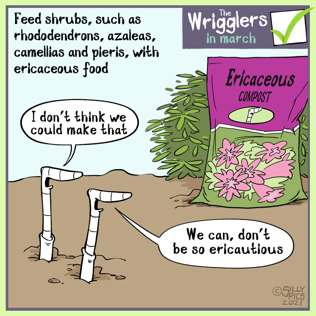 "Some plants like an ericaceous compost. In this cartoon two worms are looking at a bag of ericaceous compost, one says, 'Can we make that?"" The other work says,we can, don't be so ericautious"