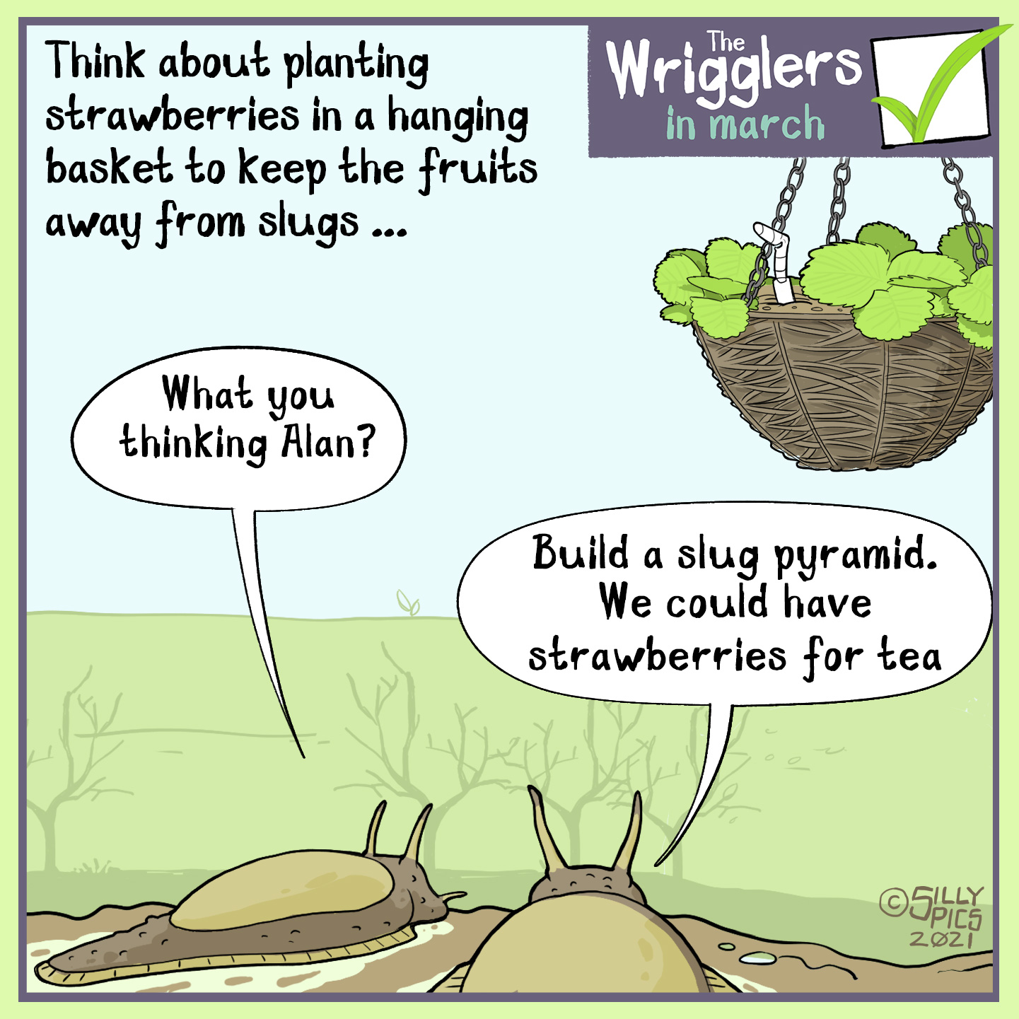 "Tip on grwoing starwberries in a hanging basket to keep them away from the slugs. The cartoon is of two slugs looking at the hanging basket, one slug says, ""What are you thinking?"" The other slug says, ""With 23 thousand slugs in a pyramid, we could be having strawberries for tea."""
