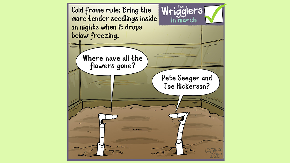 "If using a cold frame you need to take in your plants and flowers if there is a threat of frost. This cartoon is of two worms in an empty cold frame. One work asks, ""where have a ll the flowers gone?"" The other answers ""Pete Seeger and Joe Hickerson?"" Tinking it was a question on who wrote the famous song ..."