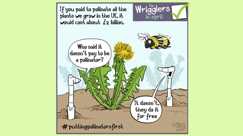 """Cartoon about pu pollinators first. A bee is hovering above a dandelion. The copy on the cartoon reads: If you paid to pollinate all the plants we grow in the UK' it would cost about   2 billion. Pollinators do this for free.  One worm says to another: """"who says it doesn't pay to be a pollinator?"""" The other worm says, """"it doesn't, they do it for free"""""""