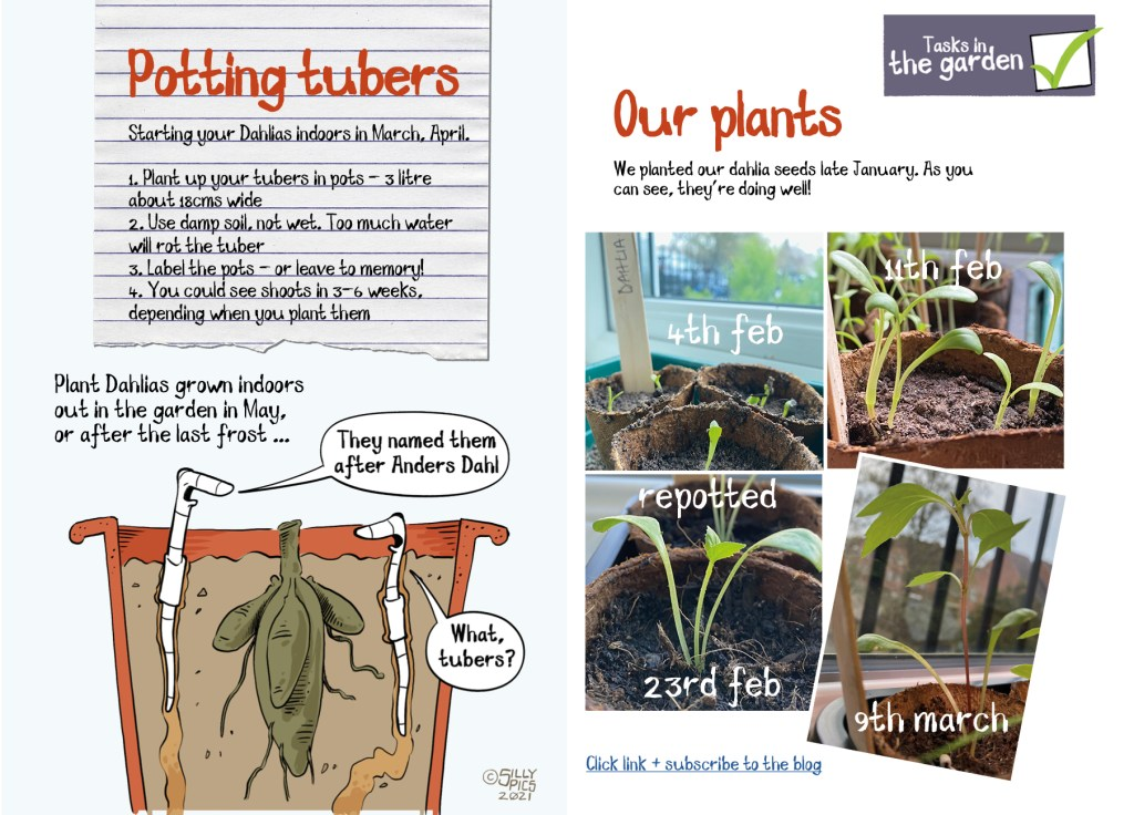 Potting up tuber layout for pdf - double page spread