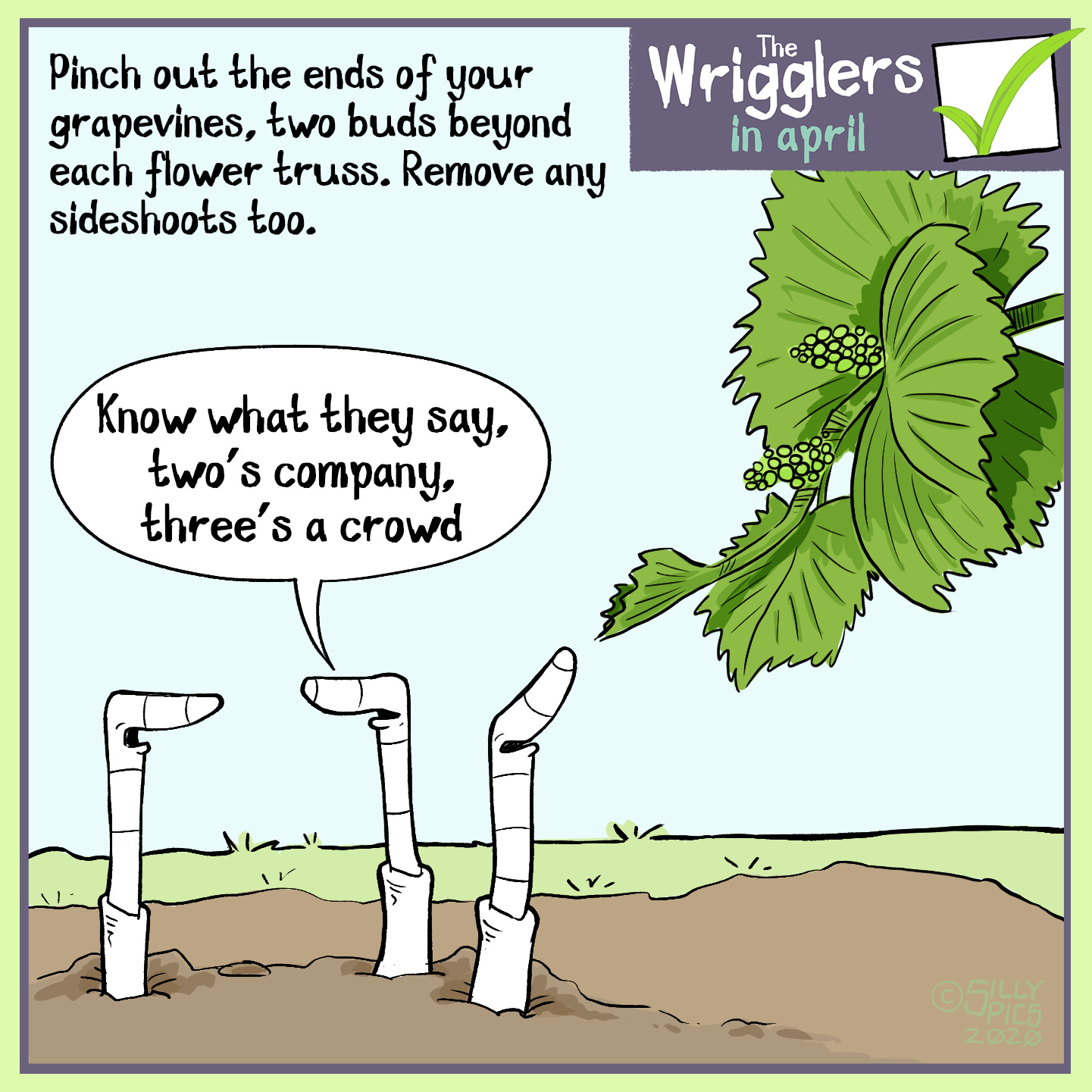 """April's the time to pinch out your grapevines to two buds beyond each flower truss. This cartoon show three worms looking at a grapevine with a flower truss. One worm turns the worm at the back and says, """"you know what they say, two's company, three's a crowd."""""""