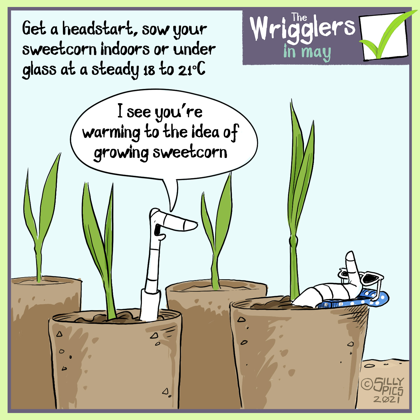 """Get a head start, grow your sweetcorn indoors or under glass at a steady 18-21 degrees. This cartoon shows two worms in sweetcorn seedling pots. One worm is lying back on a beach towel, wearing sunglasses. The other worm says, """"I see you are warming to the idea of growing sweetcorn."""""""