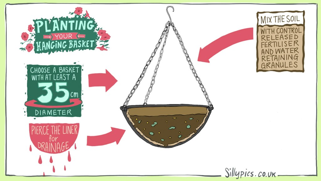 A cross section of a hanging basket. Arows pointing to the relevant parts with suggestions 1. select a basket with a diameter of 35cm or more 2. pierece the liner for drainage 3. Mix your container soil with slow release fetiliser and water retaining gel – follow the quantity on the nmanufacturers instructions 4.