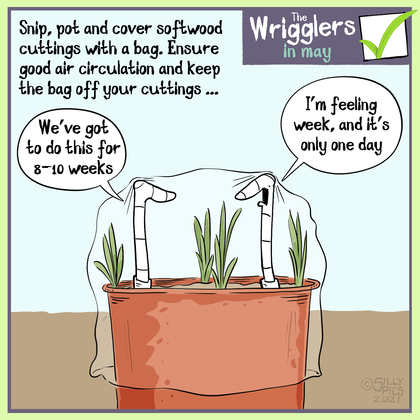 """Snip, pot and cover softwood cuttings with a bag. Ensure good air circulation and keep the bag off your cuttings … The image shows two worms in a pot with cuttings, it is covered with a plastic bag … the two worms are supporting the plastic bag to keep it off the cuttings. One worm says, """"We've got to do this for 8-10 weeks The other work says, """" I'm feeling week and it's only one day"""""""