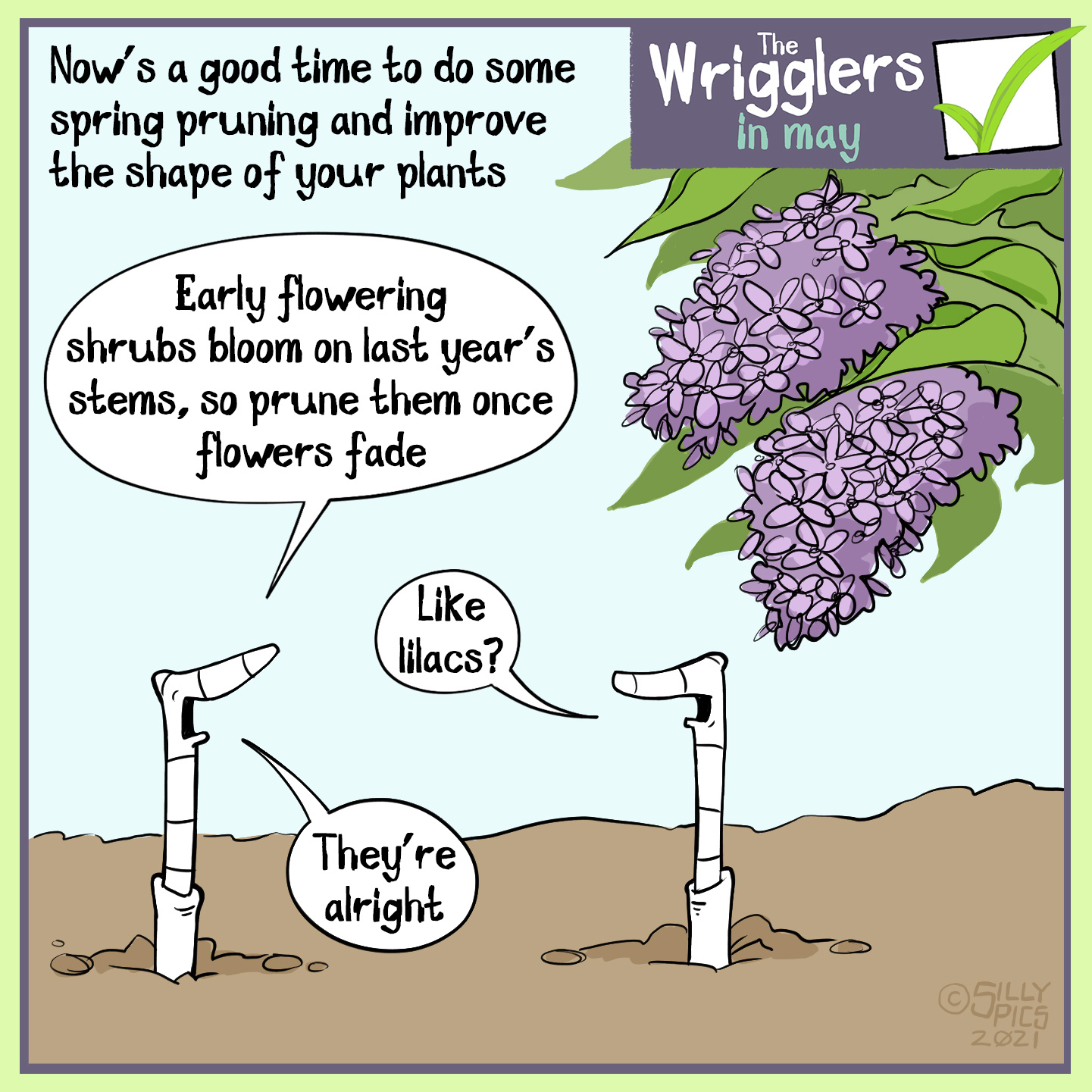 """The headline says, """"Now's a good time to dos one spring pruning and improve the shape of your plants."""" The image is of two works under a lilac branch. One of the worms says, """" Early flowering shrubs bloom on the last year's stems, so prune them once this season's flowers faded."""" The other worm says, """"Like lilacs?"""" The worm replies, """"They're alright."""""""