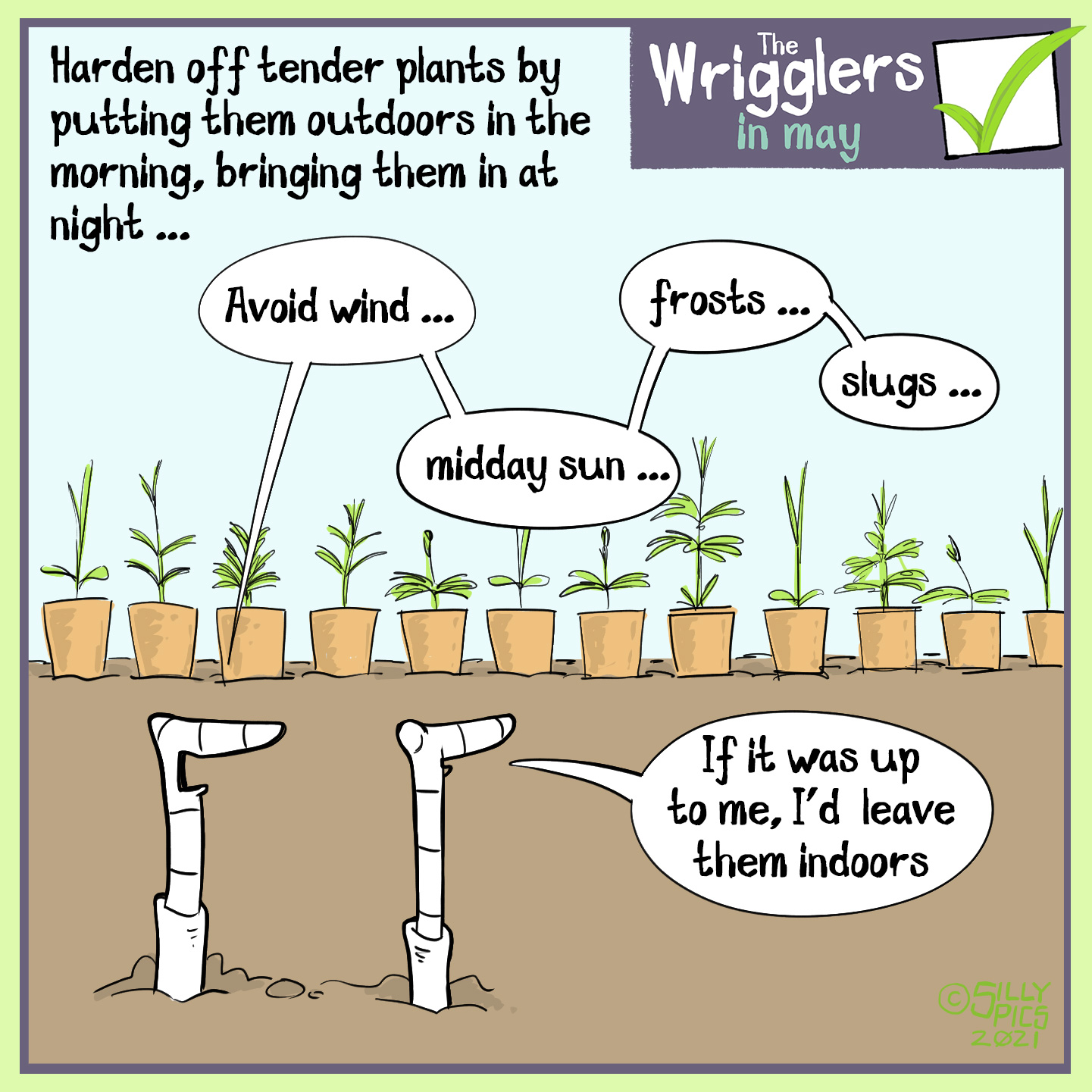 """The cartoon headline says, """"Harden off tender plants by putting them out doors in the morning, bringing in at night …."""" The image is of two worms looking at a load of young tender plants in a row. One of the worms says o the other, """"Avoid wind, midday sun, frosts, slugs …"""" The other work says, """" If it ws up to me I'd leave them indoors"""""""