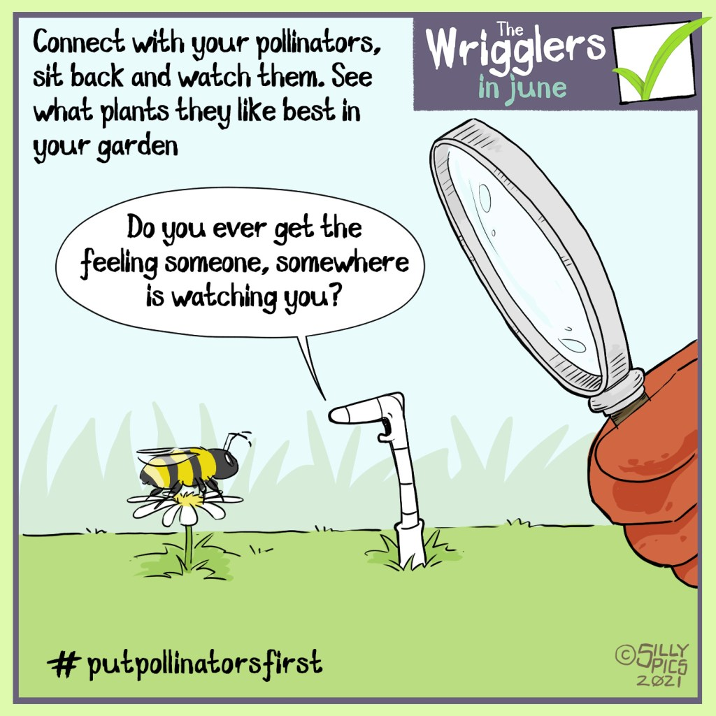 """The cartoon headline says, """"Connect with your pollinators, sit back and watch them. See what plants they like best in your garden."""" The cartoon shows a worm talking to a bee on a flower. Behind the worm is a had holding a magnifying glass, looking at the worm and bee. The worm, oblivious to this, says, """" Do you ever get the feeling someone, somewhere, is watching you?"""" #putpollinatorsfirst"""