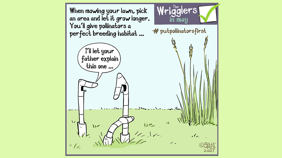 """#putpollinatorsfirst cartoon about mowing your lawn. The cartoon says: When mowing your lawn, pick an area and let it grow longer. You'll give pollinators a perfect breeding habitat.. The image is … two worms, a mum and dad figure, and a younger worm who is peering around his father to look at a the tall grass in a garden. Two worms are talking, one says, """"I'll let your father explain this one"""""""