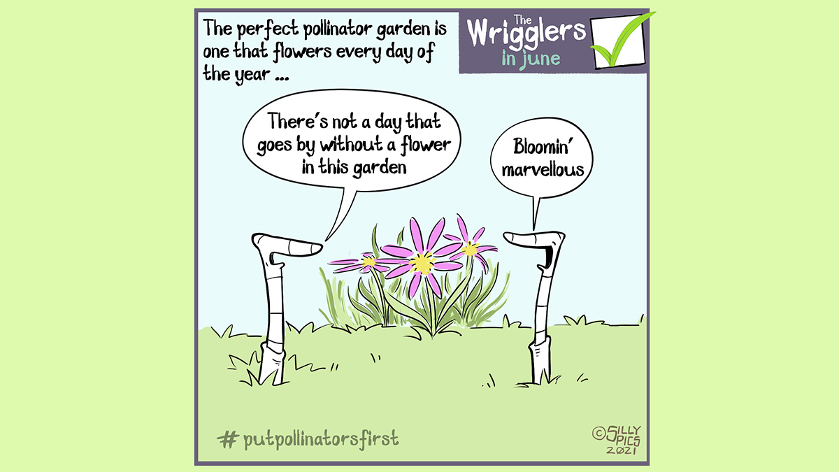 """The cartoon headline says, """"The perfect pollinator garden is one that flowers every day of the year"""" This cartoon shows two worms in front of a flower. One worm says, """"There's not a day that goes by without a flower in this garden"""", the other worm replies, """"Bloomin' marvellous"""" #putpollinatorsfirst"""