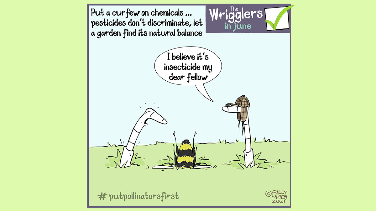 """The cartoon headline says, """"Put a curfew on chemicals … pesticides don't discriminate, let a garden find its natural balance."""" There are two worms on a lawn looking at a pollinating insect that has nose dived into the soil. One worm, wearing a deerstalker hat, says, """" I believe it's insecticide my dear fellow."""" #putpollinatorsfirst"""