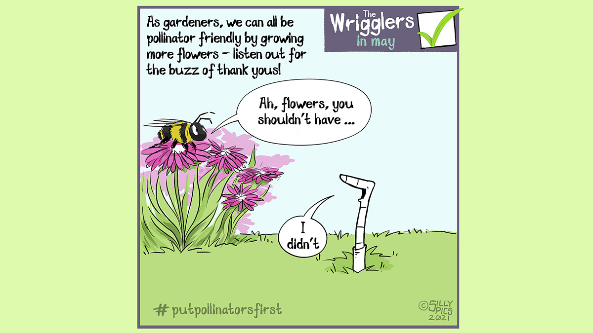 """The cartoon headline says, """"As gardeners, we can all be pollinator friendly by growing more flowers – listen out for the buzz of thank yous"""" The cartoon shows a worm talking to a bee, who is sitting on top of a bunch of flowers. The bee says to the worm, """"Ah, flowers, you shouldn't have"""" the worm answers the bee, """" I didn't"""" #pupollinatorsfirst"""