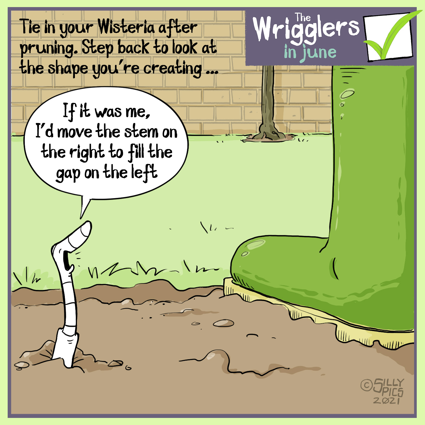 """The cartoon reads, Tie in your Wisteria after pruning. Step back to look at the shape you are creating. A worm is standing next to a wellington boot, standing back from the wisteria and looking at it. looking up at the human, the worm says, """" If it was me, I'd move the stem on the right to fill the gap on the left."""""""