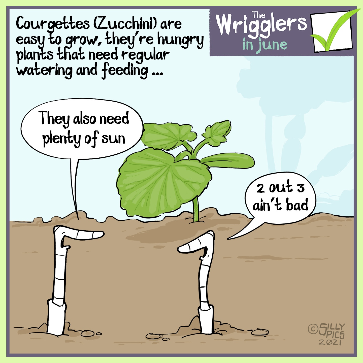 """The cartoon reads, Courgettes (Zucchini) are easy to grow, they're hungry plants that need regular watering and feeding The cartoon is of two worms sitting in front of a small courgette plant. One worm says, """" They also need plenty of sun …"""""""" The other worm replies, """"2 out of 3 ain't bad"""""""