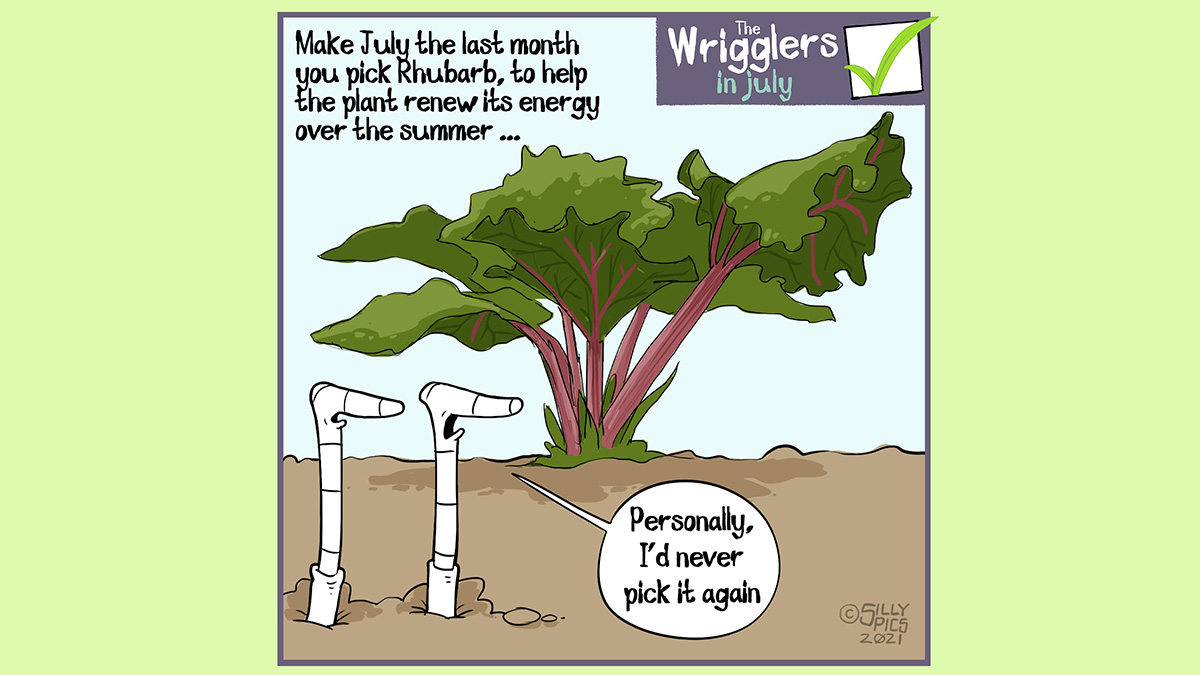 """Above the wrigglers gardening cartoon it reads: Make July the last month you pick rhubarb, to help the plant renew its energy over the summer ... The cartoon depicts two worms standing in front of a rhubarb plant. One worm says to the other worm, """"Personally I'd never pick it again"""""""