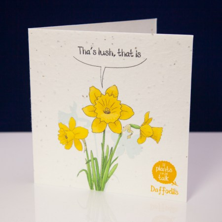 """seed paper greeting card 'if plants could talk' showing a sprig of coiander saying, """" Tha's lush, That is"""""""