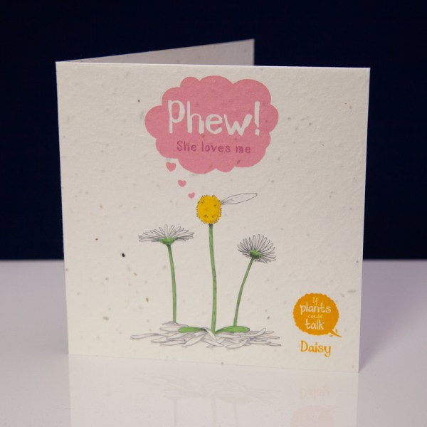 """seed paper greeting card 'if plants could talk' showing a daisy plant with one leaf, saying """"Phew! She loves me"""""""